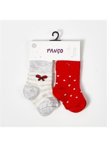 Panço Kız Bebek 2 li Çorap 19136172246 Renksiz